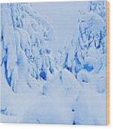 Snow-covered To Vallee Des Fantomes Wood Print