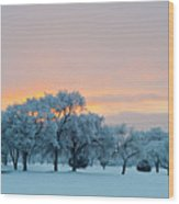 Snow Covered Trees At Sunset Wood Print by Nancy Newell