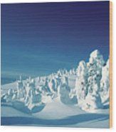 Snow Covered Trees, Yellowstone National Park, Wyoming, Usa Wood Print