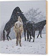 Snow Day I Wood Print by Betsy Knapp
