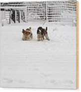 Snow Day Play II Wood Print