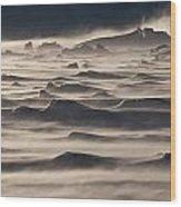 Snow Drift Over Winter Sea Ice Wood Print