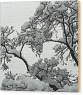 Snow Falling On Branches Wood Print