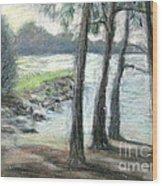 Snow Flurrys At Galt's Ferry Wood Print by Gretchen Allen