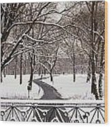 Snow In Central Park Wood Print