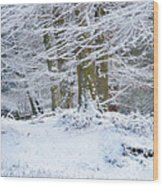 Snow Magic Wood Print