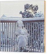 Snow On Grilles Wood Print