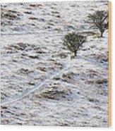 Snow On Moorland Wood Print