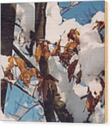 Snow On The Fall Leaves Wood Print