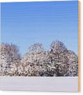 Snow Panoramic Landscape Wood Print