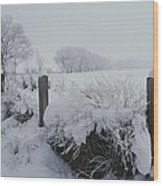 Snow, Rime Ice, And Fog Cover Wood Print