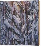 Snow Splattered 1 Wood Print