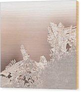 Snowland Wood Print