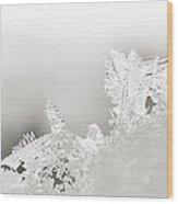 Snowland Bw Wood Print