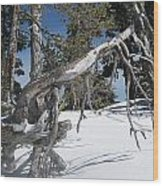 Snowshoeing On A Clear Day Wood Print