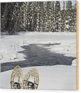 Snowshoes By Snowy Lake Lake Louise Wood Print by Michael Interisano