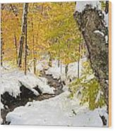 Snowy Brook Wood Print