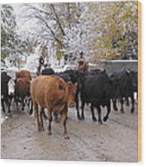 Snowy Cattle Drive Wood Print