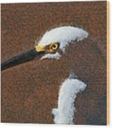 Snowy Egret Profile Painterly Wood Print