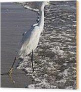 Snowy Egret Walking Wood Print