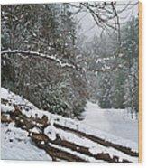 Snowy Fence Wood Print