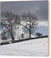 Snowy Field, Weardale, County Durham Wood Print by John Short