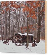 Snowy Implement Wood Print