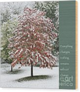 Snowy Maple With Buddha Quote Wood Print