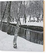 Snowy Park Wood Print