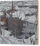 Snowy Pond Wood Print