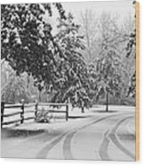 Snowy Tracks Wood Print
