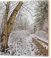Snowy Watercolor Wood Print by Debra and Dave Vanderlaan