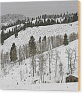 Snowy Wilderness Wood Print