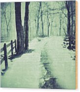 Snowy Wooded Path Wood Print