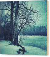 Snowy Woods By A Lake Wood Print