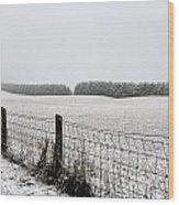 Snowyfence Wood Print