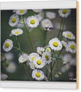 So Many Flowers So Little Time Wood Print
