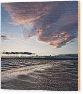 Soaring Beach Wood Print