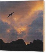 Soaring In The Midnight Sun Wood Print by Joe Bonita