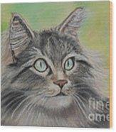 Soft Kitty Wood Print