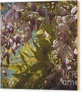 Soft Pastel Spring Wood Print