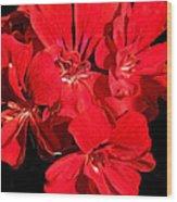 Soft Petals Cascade Wood Print