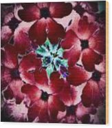 Soft Scarlet Floral Wood Print