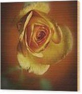 Soft Yellow Rose Orange Background Wood Print by M K  Miller
