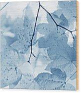 Softness Of Blue Leaves Wood Print