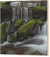 Sol Duc Stream Wood Print