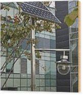 Solar-powered Street Light In Daejeon Wood Print by Mark Williamson