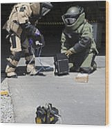 Soldiers Dressed In Bomb Suits Examine Wood Print