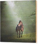 Solitary Horse Wood Print by Christiana Stawski