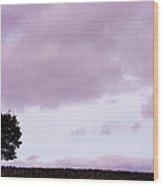 Solitude - Denbigh Moors Wood Print